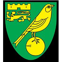 Norwich Club Badge