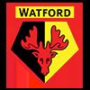 Watford Club Badge