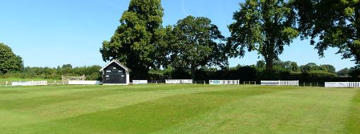 Cricket surface types