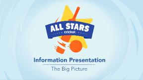 All Stars Cricket - the big picture